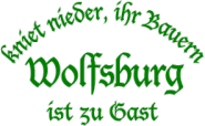 Kapuzenpulli kniet nieder-Wolfsburg