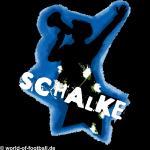 Kapuzenpulli  Schalke Capo
